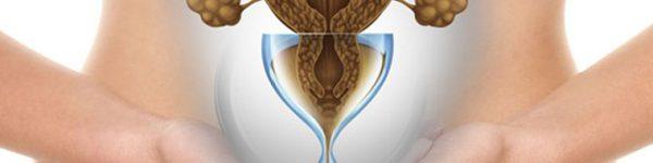 בדיקת רזרבה שחלתית - AMH TEST